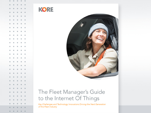 Ebook WP 500x376 Fleet Managers Guide
